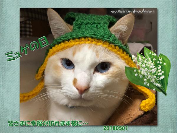 20180501myugenohi2.jpg