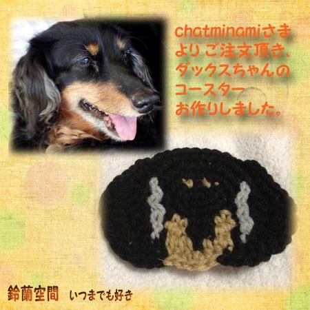 chatminamisama_1wan_kosuta.jpg