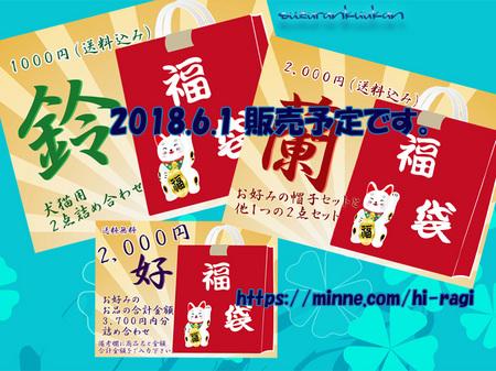2018hantosi_fukuibukuro.jpg