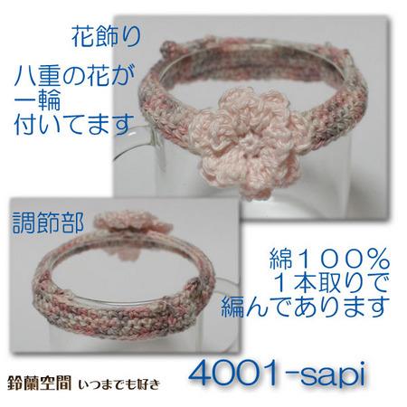 4001-sapi.jpg