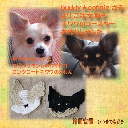 buddy★conniesama_2wan_kosuta.jpg