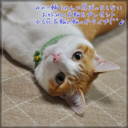 cPcYPJccmJR_tAp1387715814_1387715973.jpg