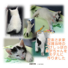 m_asorasama_hogotouzimiutyan_mihon.jpg
