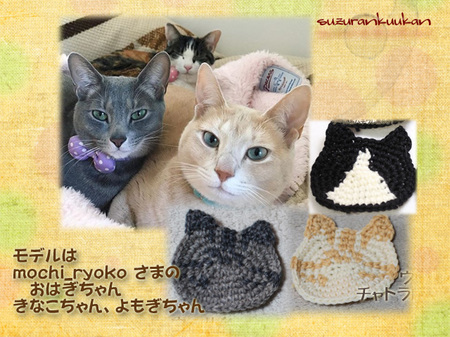 nekokosuta_iroawase1.jpg