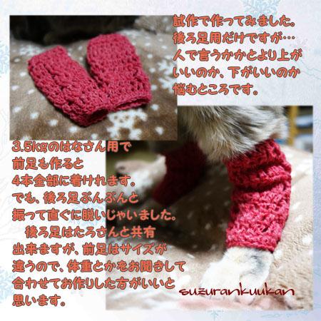 regguuouma_nekoyou_sisaku.jpg