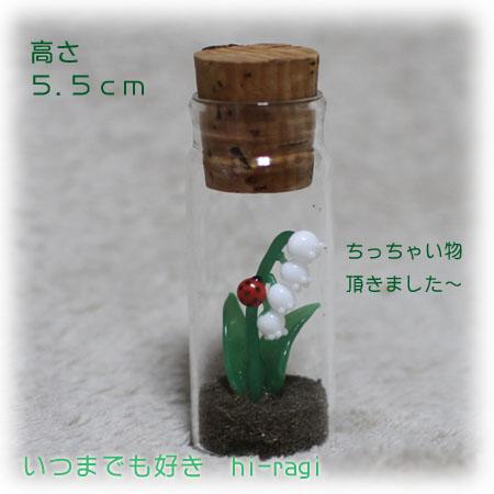 201305garasunosuzuran.jpg