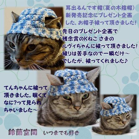 201408purezento_soneburo2.jpg