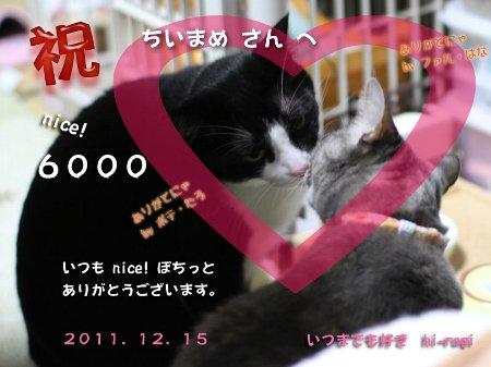 6000nice!thankss.jpg