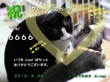 6666nice!thankss.jpg
