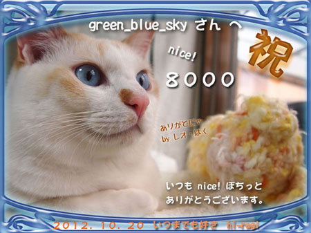 8000nice!thanks_s.jpg