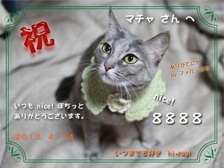 8888nice!thanks_s.jpg