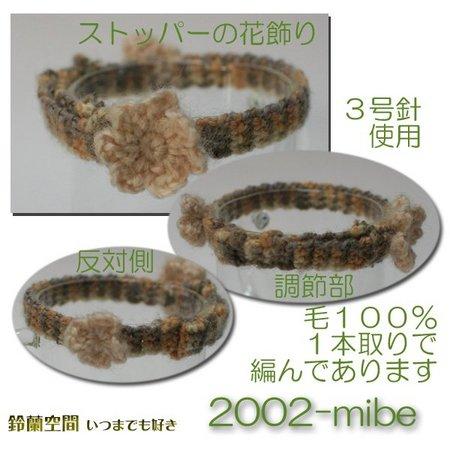 2002-mibe.jpg