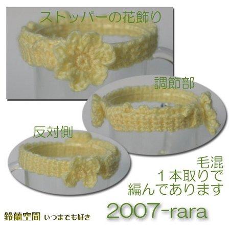2007-rara.jpg