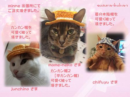 20150311_3nyan_kankanbou_hirakan_natukokage.jpg
