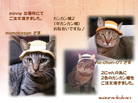 20150909_3nyan_hirakan.jpg