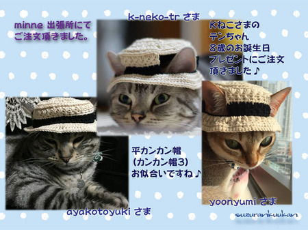 20160713_3nyan_hirakan.jpg