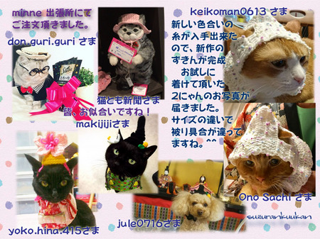 20170301_6nyan_1wan_ryueukanmuri_momokanmuri_hirakan_sirozukin.jpg