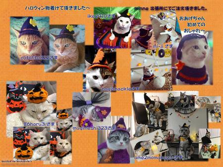 2017110125_8nyan_harowinbousi_kepu_kabotya.jpg
