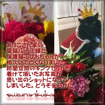 201809_arikosanheokuyami_s.jpg