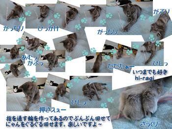 クリックで拡大:hanamisangadeasobu.jpg