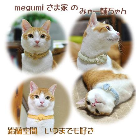megumisama_myaasuketyan.jpg