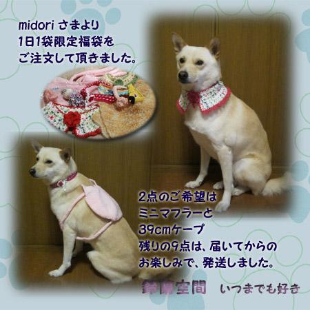 midori _sama_gantan1fukurogenteifukubukuro.jpg