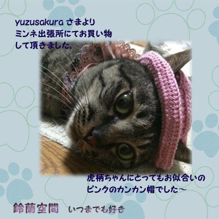 yuzusakurasama_1nyan_kankanbou.jpg